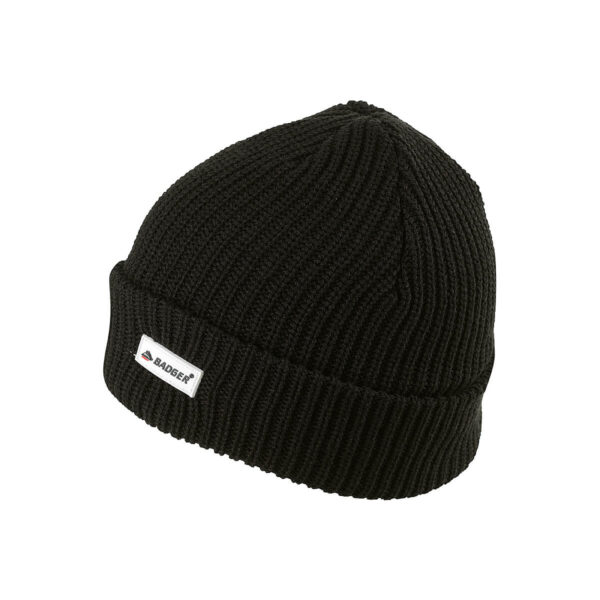 Badger Double Knit Thinsulate Beanie - FH101B (2)
