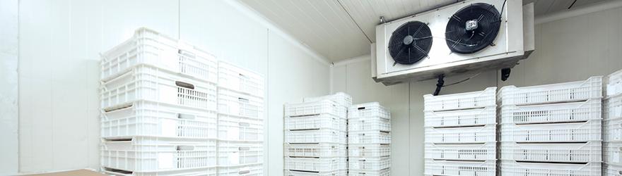 Refrigeration masterclass