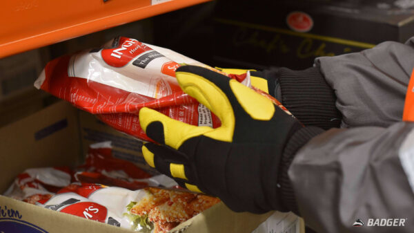 ProChill Freezer Gloves